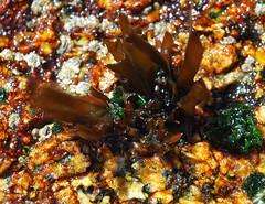 (AlíAyala) Tags: macro mar algas