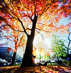 reading about somewhere else (thespeak) Tags: red woman tree fall leaves yellow oregon portland reading book downtown under pinhole fiona pdx portlandoregon zero2000 zeroimage psu portlandstateuniversity