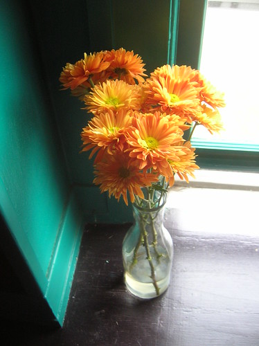 orange flowers in vase on a windowsill