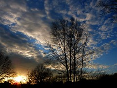 last sunlight (Eisgrfin (very busy)) Tags: blue autumn sun nature clouds heaven herbst himmel wolken blau sonne thesuperbmasterpiece updatecollection eisgrfin theoriginalgoldseal