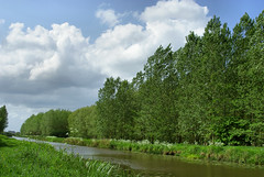 Spring in Autumn (Hindrik S) Tags: wood blue sky cloud green nature water loft clouds landscape spring sony natuur wolken lucht bos wald friesland leeuwarden wolk kleur a300 frysln liwwadden bosk ljouwert sonyalpha 300 alpha300 wld