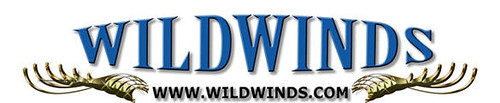 wildwinds.com logo