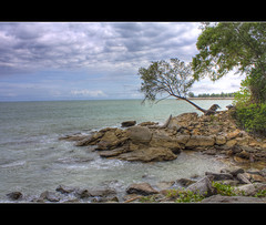 Longetivity (t2psalm) Tags: trees sea seascape canon daylight rocks waves shore handheld splash tough brunei survival hdr survivor southchinasea stormyclouds moodysky photomatix tonemapped opensea bruneidarussalam eos450d jerudongbeach longetivity hotonflickr samcorros t2psalm hdrlabscom