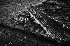 track (monkeyfinger) Tags: cambridge blackandwhite highcontrast provoke silverefexpro dg012