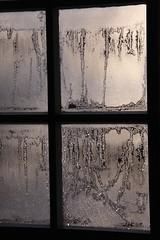 (:Linda:) Tags: ice church germany thringen frost village thuringia inside eis windowpane eisblumen iceflower kirchenfenster brnn frostflower eisblume frostonwindowpane eisblumenfenster onawindowpane churchwindowfrominside