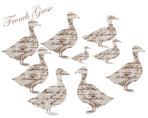 french-geese-2