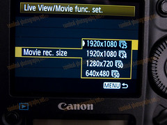 1D MarkIV PAL Video Mode Settings