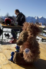 travelling again (Eve O. Lushion) Tags: blue skiing obersterreich mrbrown schifahren guins hinterstoder hss