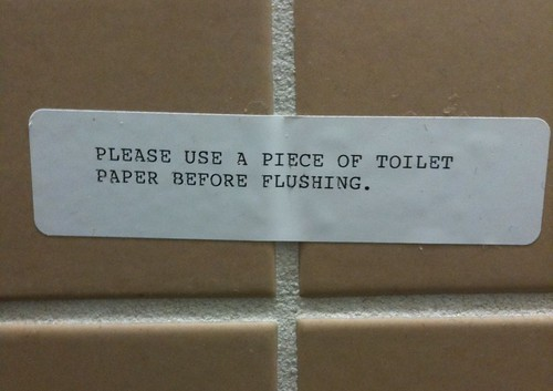 Please use a piece of toilet paper before flushing.