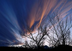 Voodoo Blues (Ph0tomas) Tags: trees sunset sky storm newmexico clouds landscape blues 1001nights bushes socorro impressedbeauty