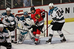 Tongue Wagging (Kris Nelson Photography) Tags: sports hockey action sharks hawks xsi burish topazdenoise topazdetail info:post=none info:file=img4030