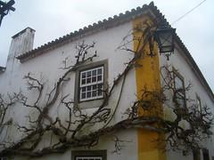 Portugal (vi !) Tags: óbidos