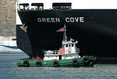 Salalah (Gerry Hill) Tags: cruise green harbor persian gulf harbour cove coastal tug oman pilot patrol seas brilliance mutrah salalah
