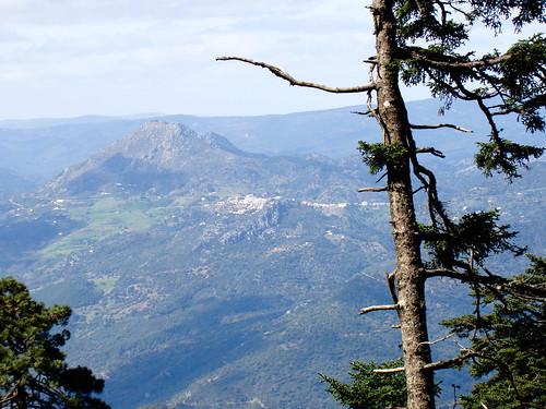 Ruta Sierra Bermeja (11)