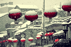 red (ShanLuPhoto) Tags: china winter snow houhai