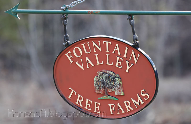 Fountain Valley Tree Farms (by KansasA)