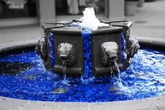 (UNBORNE) Tags: blue bw blur color water fountain photoshop photography nikon focus downtown lion napa d100 edit manipulate