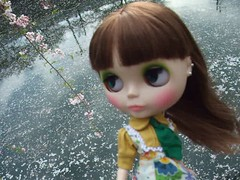 Moving Blythe doll 6