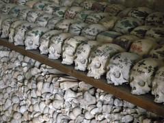 100414_Hallstatt 102 (Tauralbus) Tags: friedhof cemetery skull austria österreich oberösterreich weltkulturerbe hallstatt upperaustria schädel beinhaus totenkult totenschädel unescoweltkulturerbe