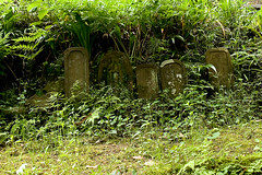 Covered Gravestones