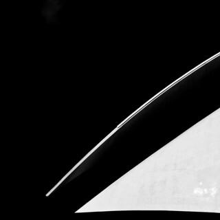 ◢ pelican