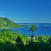 View of Opunohu Bay