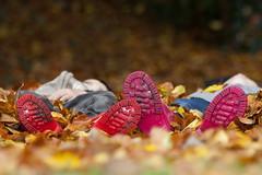 Boots (Impian) Tags: pink autumn red leaves season boots herfst kinderen blad kind seizoen bladeren laarzen