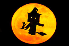 Witch Danbo (Ali Tse) Tags: black halloween silhouette 1025fav cat toy toys amazon witch limited danbo revoltech jfigure danboard