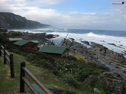 Tsitsikamma national park coast line at Storms River Park