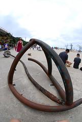 DSC_0345 ([+babydoll]) Tags: sea art bondi fisheye sculpturebythesea 2009 artworks sculpturesbythesea scuptures fisheeye