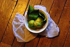 1 - 22 novembre 2009  Citron de Corse (melina1965) Tags: wood november light macro fruits leaves fruit leaf lemon nikon novembre îledefrance lumière lemons 2009 citron amateurs bois feuilles feuille valdemarne citrons maisonsalfort d80 leagueofwomenphotographers