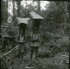 Dammar gum gatherers wearing backpacks