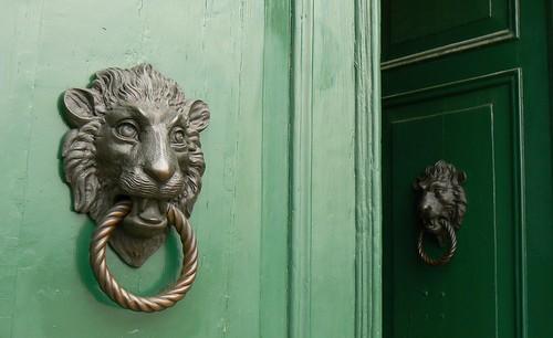 Lion Doors