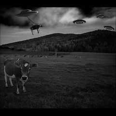 Project bovine abduction (tanvir_flickr) Tags: atlanta red brown green art field cow flying gorgia open away ufo take firm saucer alian apduction