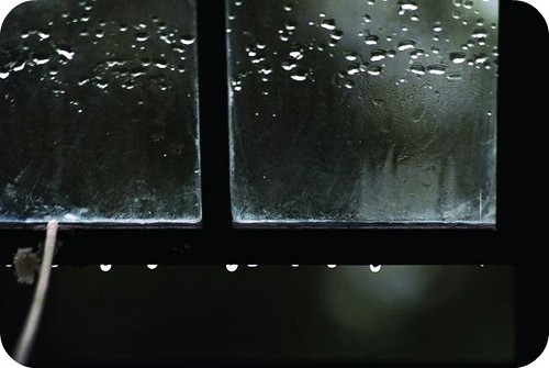 window-and-raindrops-steve-somerville