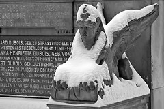 The snow sphinx (NRG Photos) Tags: schnee winter snow grave sphinx memorial grab darmstadt denkmal alterfriedhof mythicalcreature oldcemetery fabeltier