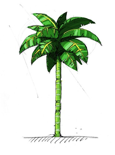 Needlemouse - Palm Tree