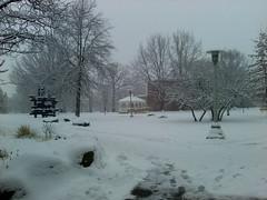 Day 41: Snow