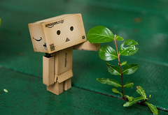 It's Danbo Sized!