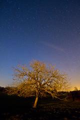 :: Off :: (milkaaaaa) Tags: sky night canon stars long exposure exposition ciel 7d nuit vienne 1022 toiles haute limousin longue