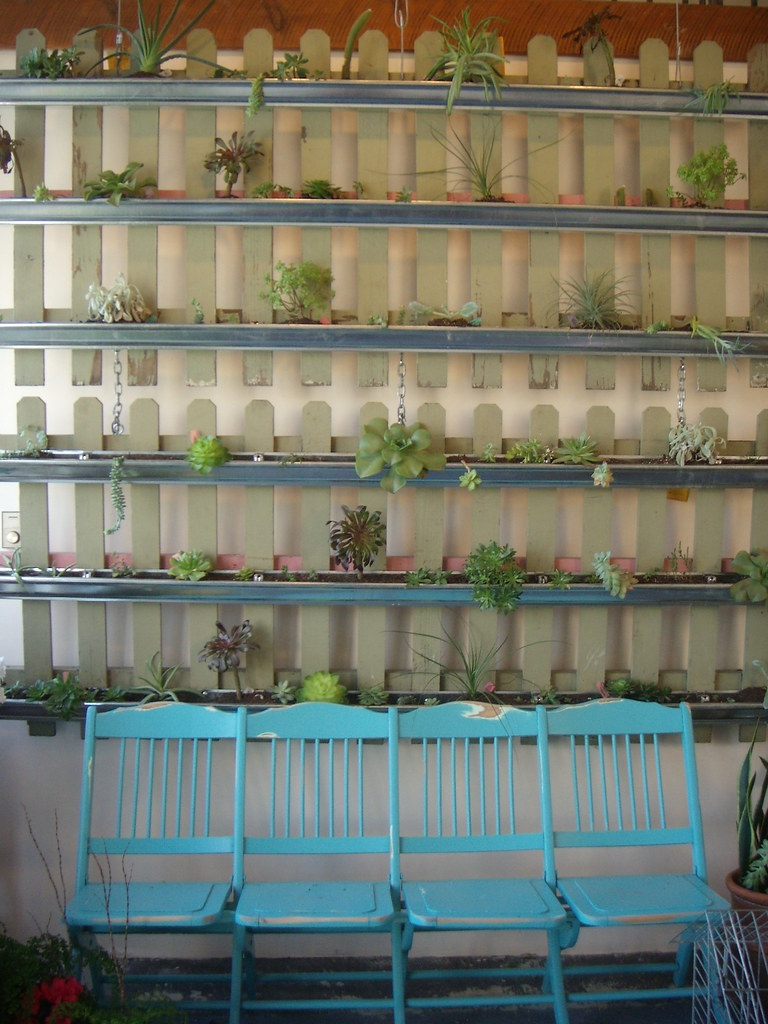 Succulent Wall Gorgeous and Green Events
