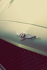 Bentley.. (- M7D . S h R a T y) Tags: cars car logo motors luxury bentley luxurious wordsbyme بنتلي ®allrightsreserved™