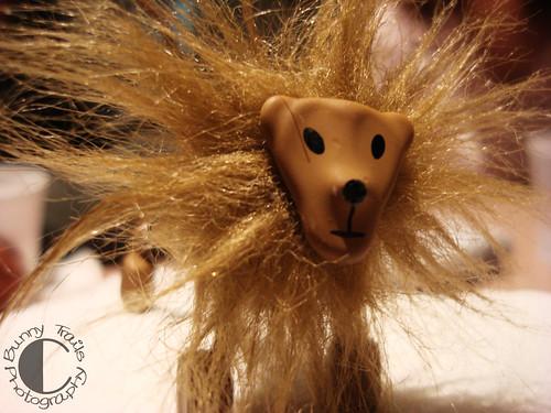 93-lion2