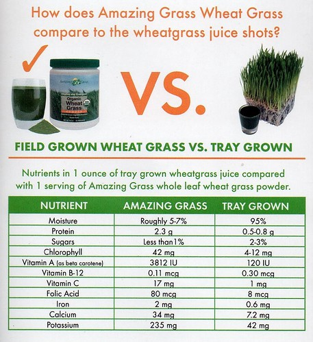 wheatgrass powder vs wheatgrass juice