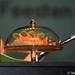 sterrennieuws gentsefeesten2011persconferentieminardschouwburggent