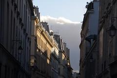 PARIS BALADE DSC_0044 (2)