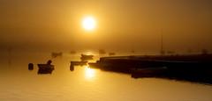 Emsworth Gold (Solent Poster) Tags: emsworth harbour uk south coast 2016 pentax sunrise sunset 2470mm k1