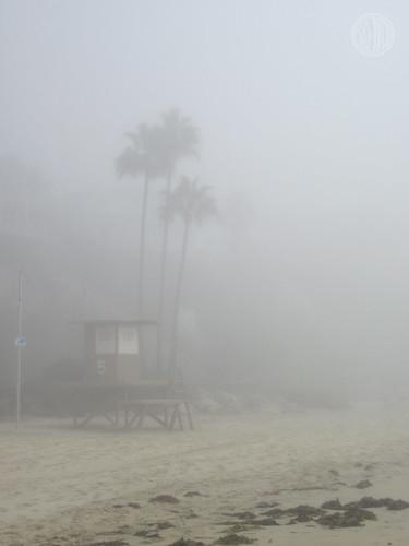 California dreamin...