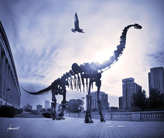 The Dinosaur and the City (Tomasito.!) Tags: chicago bird silhouette museum buildings skeleton illinois nikon dinosaur landmark fieldmuseum lensflare cookcounty nikond90 vertorama