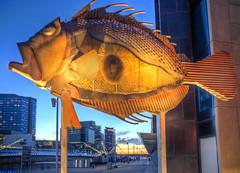 Fish along the Yarra River (J-C-M) Tags: sunset sculpture photoshop river nikon d70s melbourne victoria yarra docklands hdr topaz photomatix tonemapped